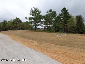 Lot 48 Wildwood Ln., Myrtle, MS 38650