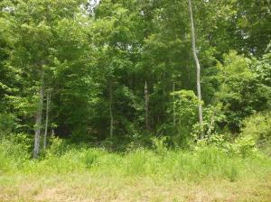 Lot 42 Wildwood, Pontotoc, MS 38863