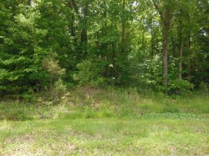 Lot 20 Roughwood, Pontotoc, MS 38863