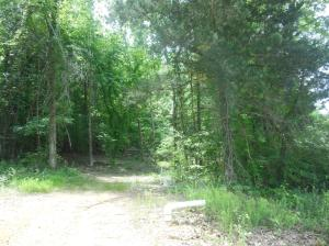 Lot 25 Wildwood, Pontotoc, MS 38863