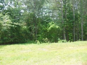 Lot 2 Timber Creek, Pontotoc, MS 38863