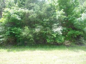 Lot 4 Timber Creek, Pontotoc, MS 38863