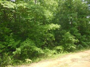 Lot 37 Wildwood, Pontotoc, MS 38863