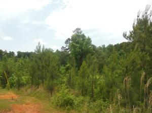 Hwy 9 North, Pontotoc, MS 38863
