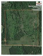 Eads Creek Rd, Belden, MS 38826