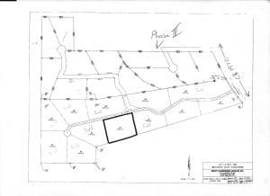Lot 4 Winward Oaks, Guntown, MS 38849