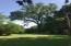 Large trees make wonderful shaded yard