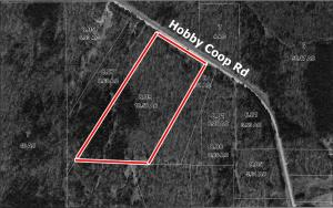 Hobby Coop Road, Thaxton, MS 38871