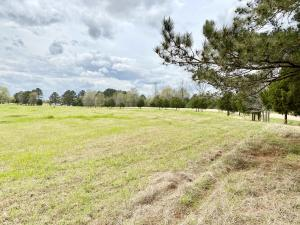 LOT #5 Martintown Road, New Albany, MS 38652
