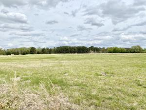 LOT #6 Martintown Road, New Albany, MS 38652