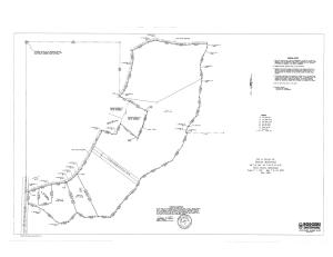 (45.83 acres) CR 204, Blue Springs, MS 38828