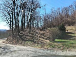 Lot #1 Majestic Drive, Duffield, VA 24244