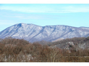 Property for sale at 000 HWY 421, Mountain City,  Tennessee 37683
