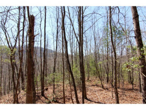 Property for sale at 7588 ROAN CREEK Road, Mountain City,  Tennessee 37683