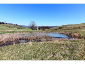 Property for sale at 000 HUGGINS Road, Mountain City,  Tennessee 37683