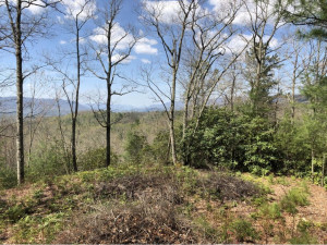Property for sale at Lot 6 Sprucy Ridge Private Drive, Mountain City,  Tennessee 37683