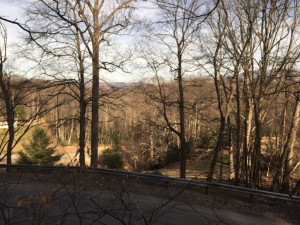 Property for sale at TBD Bulldog Road, Trade,  Tennessee 37691