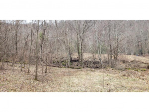 Property for sale at 00 Fall Branch Road, Mountain City,  Tennessee 37683