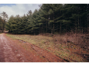 Property for sale at TBD Hawkins Road, Laurel Bloomery,  Tennessee 37680