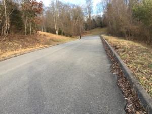 49 Woods Edge Drive, Blountville, TN 37617