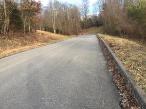 50 Woods Edge Drive, Blountville, TN 37617