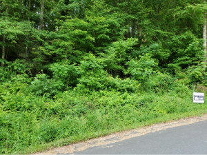 TBD Cedar, Mountain City, TN 37683