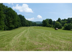 Property for sale at TBD SLUDER Road, Shady Valley,  Tennessee 37688