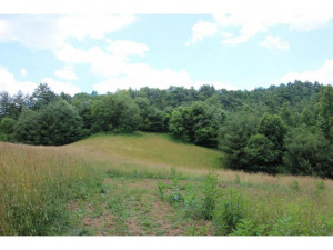 Property for sale at 000 OF WATERS Road, Laurel Bloomery,  Tennessee 37680