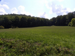 Property for sale at 000 SLUDER Road, Shady Valley,  Tennessee 37688