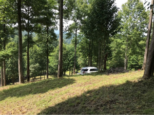 Property for sale at TBD Old Forge Creek, Mountain City,  Tennessee 37683