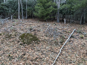 Property for sale at 00 Valley Creek, Butler,  Tennessee 37640