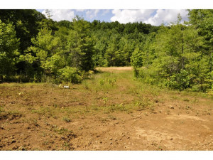 Property for sale at 0 NICHOLS Road, Shady Valley,  Tennessee 37688