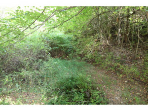 Property for sale at 00 WATERS Road, Laurel Bloomery,  Tennessee 37680