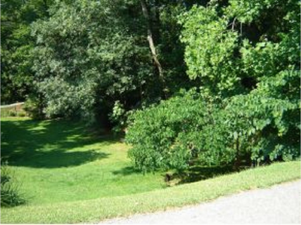 Image for LOT/TRACT FOR SALE IN   SUBDIVISION (WISE COUNTY)