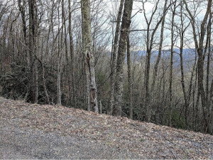 Property for sale at TBD Stone Mountain Road, Trade,  Tennessee 37691