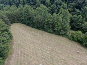57.5 AC UPPER CANEY VALLEY Road, Tazewell, TN 37879