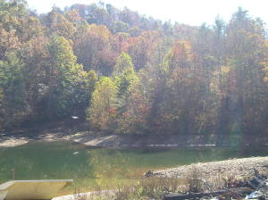 Property for sale at 00 HIGHWAY  159, Bulter,  Tennessee 37640