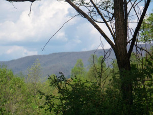 Property for sale at 000 Big Dry Run, Mountain City,  Tennessee 37683