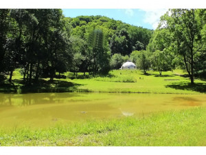 Property for sale at 458 T Greer Road, Mountain City,  Tennessee 37683