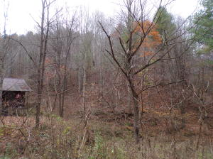 Property for sale at TBD BRUSHY FORK Road, Trade,  Tennessee 37691