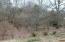 1405 Ruth Brook Drive, Mount Carmel, TN 37645
