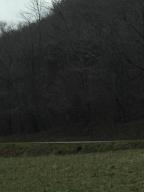 Tbd 45 Acres War Creek Road, Thorn Hill, TN 37881