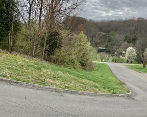 13 Highland Meadows Drive, Blountville, TN 37617