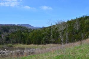 1832 Clinch Valley Road, Sneedville, TN 37869