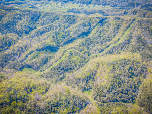 Property for sale at Tbd Rabbit Gap Road, Greeneville,  Tennessee 37745