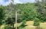 00 Captain Nelson Road, Roan Mountain, TN 37687