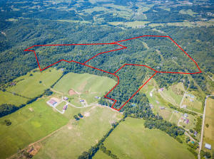 Property for sale at 000 Wells Pruitt Lane, Mosheim,  Tennessee 37818