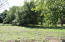 0 Lot 1 Leonard Drive, Jonesborough, TN 37659