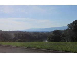 Tbd River View Drive, Greeneville, TN 37743