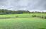 5212 Hester Court, Piney Flats, TN 37686